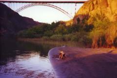 BRIDGE_jpg (1)