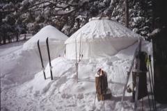 SKIS IN SNOW_jpg